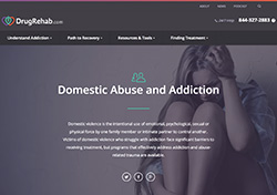 Domestic Abuse and Addiction