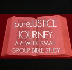 purejustice journey